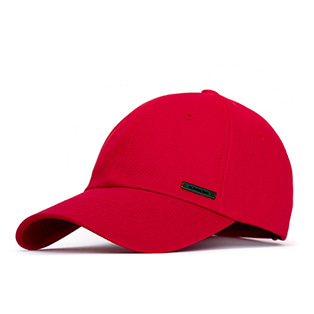 BBD Plate Logo Cap (Red)
